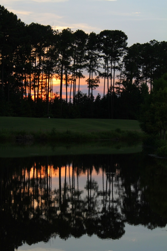 I got to see this beautiful sunset every night in SC over the summer!