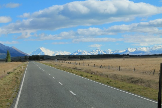 Driving in New Zealand is positively wonderful!