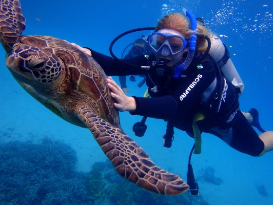 And rode a sea turtle while Scuba Diving
