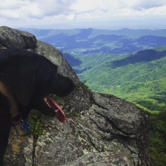 Hike Trail Runs